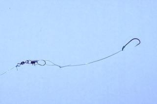 Bullhead Catfish Snelled Hook Rig