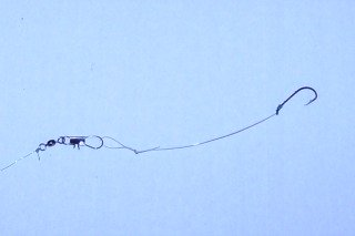 Bullhead Catfish Snelled Hook Rig